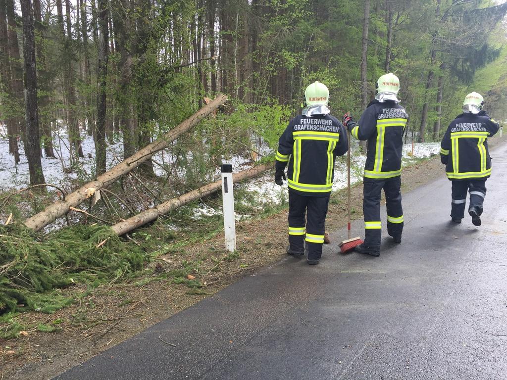 Technischer Einsatz vom 20.04.2017  |  (C) Feuerwehr Grafenschachen (2017)